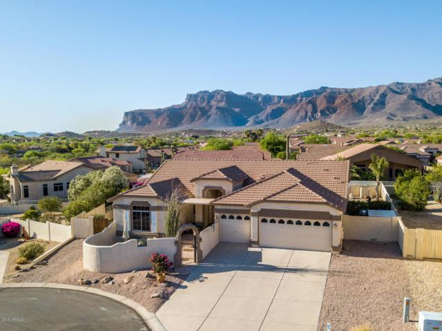 10170 E Rising Sun Place, Gold Canyon, AZ 85118 (MLS #5769492) :: The Pete Dijkstra Team
