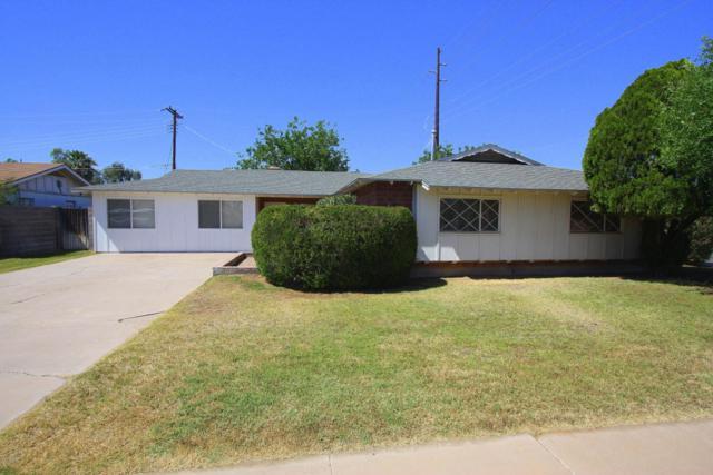 8748 E Terrace Drive, Scottsdale, AZ 85251 (MLS #5769497) :: Yost Realty Group at RE/MAX Casa Grande
