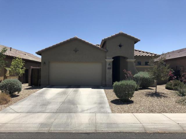 18029 W Purdue Avenue, Waddell, AZ 85355 (MLS #5769498) :: Phoenix Property Group