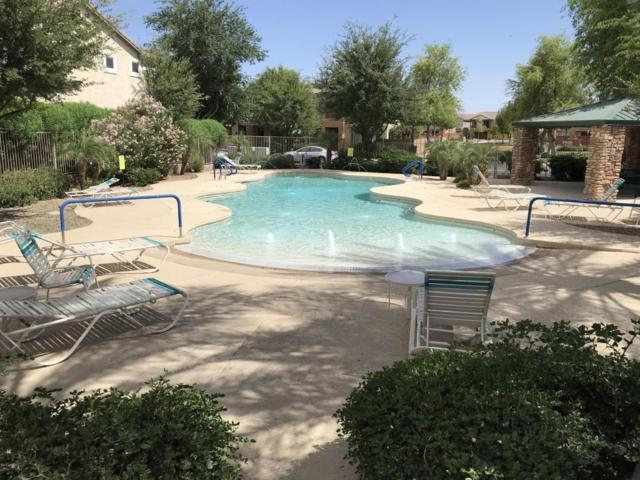 4324 E Carla Vista Drive, Gilbert, AZ 85295 (MLS #5769507) :: Revelation Real Estate