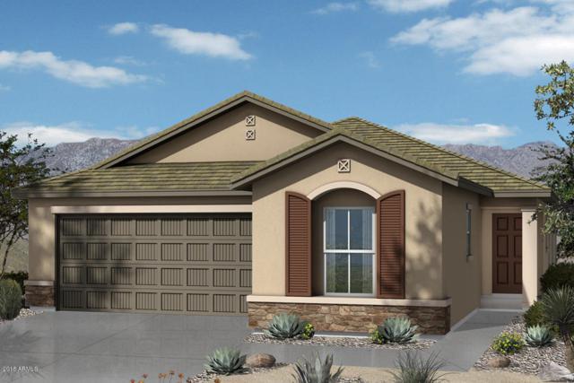 40792 W Tamara Lane, Maricopa, AZ 85138 (MLS #5769544) :: Yost Realty Group at RE/MAX Casa Grande