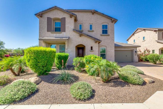913 E Boston Street, Gilbert, AZ 85295 (MLS #5769556) :: Revelation Real Estate