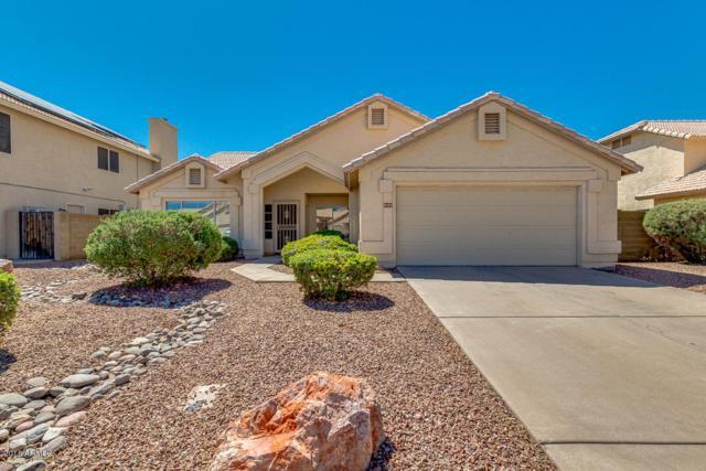 4101 E Encinas Avenue, Gilbert, AZ 85234 (MLS #5769609) :: Revelation Real Estate