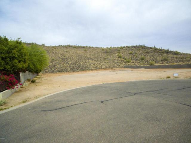 23805 N 63RD Drive, Glendale, AZ 85310 (MLS #5769614) :: The W Group