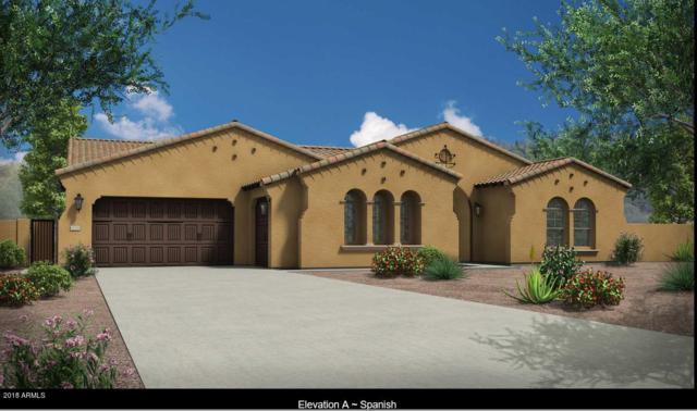 22459 N 91ST Drive, Peoria, AZ 85383 (MLS #5769642) :: The Laughton Team