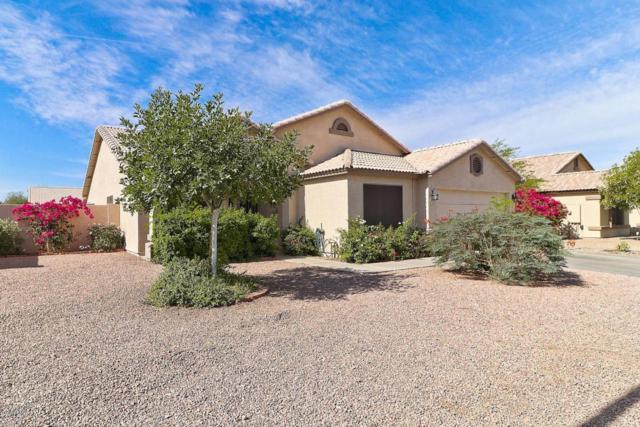 5167 W Augusta Avenue, Glendale, AZ 85301 (MLS #5769644) :: The Laughton Team