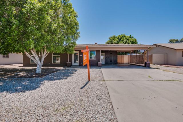 825 W Shannon Street, Chandler, AZ 85225 (MLS #5769661) :: The Bill and Cindy Flowers Team
