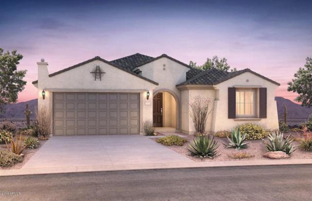5217 W Lariat Lane, Phoenix, AZ 85083 (MLS #5769703) :: The Laughton Team