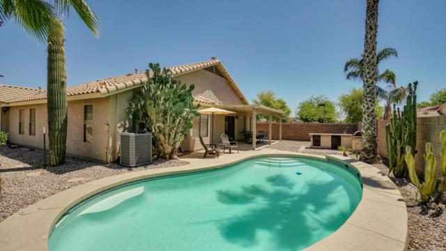 16561 W Monroe Street, Goodyear, AZ 85338 (MLS #5769748) :: My Home Group
