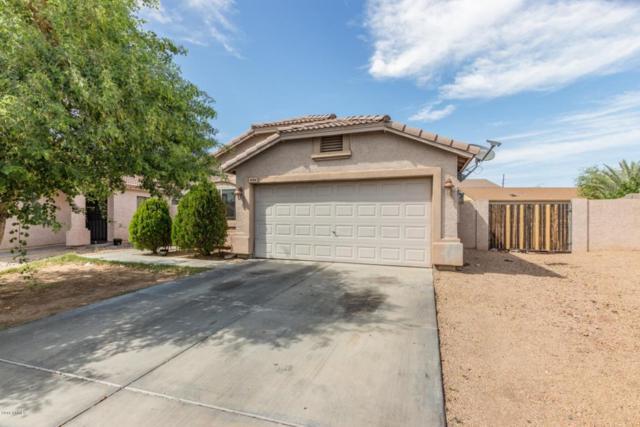 6704 W Northview Avenue, Glendale, AZ 85303 (MLS #5769845) :: The Laughton Team