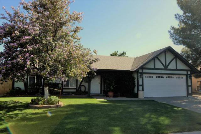 2347 E Crescent Avenue, Mesa, AZ 85204 (MLS #5769923) :: Power Realty Group Model Home Center