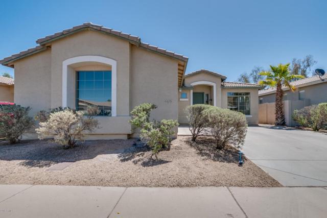 5175 S Eileen Drive, Chandler, AZ 85248 (MLS #5769924) :: My Home Group