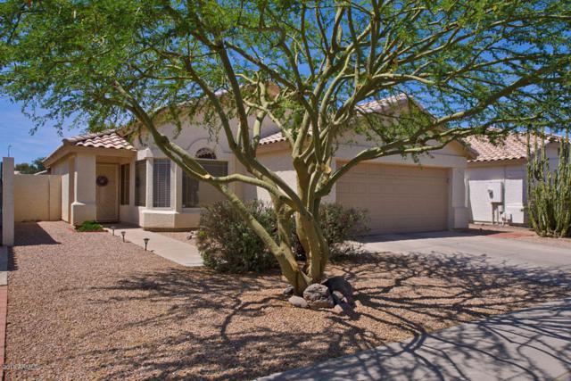 693 W Greentree Drive, Chandler, AZ 85225 (MLS #5769927) :: Kepple Real Estate Group