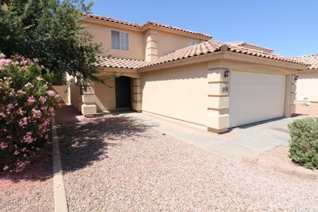 11706 W Poinsettia Drive, El Mirage, AZ 85335 (MLS #5770049) :: My Home Group