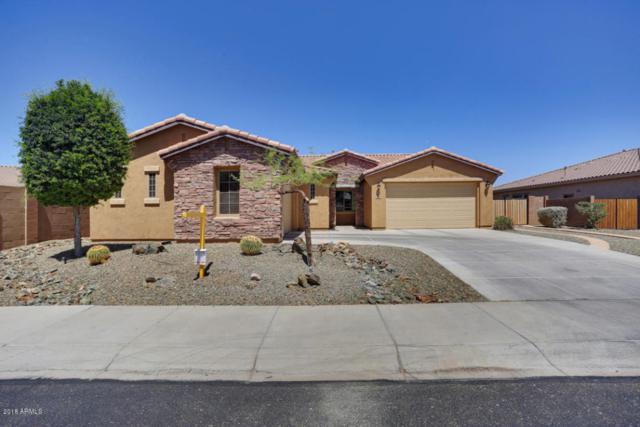 30647 N 125th Drive, Peoria, AZ 85383 (MLS #5770053) :: My Home Group