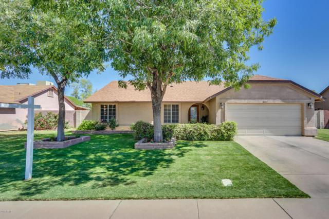 2314 E Folley Street, Chandler, AZ 85225 (MLS #5770069) :: Kepple Real Estate Group