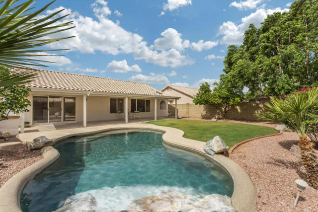 211 W Wahalla Lane, Phoenix, AZ 85027 (MLS #5770072) :: My Home Group