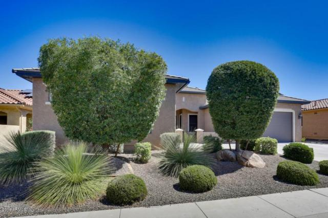 27118 W Marco Polo Road, Buckeye, AZ 85396 (MLS #5770103) :: 10X Homes