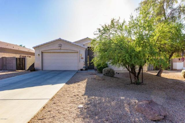 6788 N 79TH Drive, Glendale, AZ 85303 (MLS #5770113) :: 10X Homes