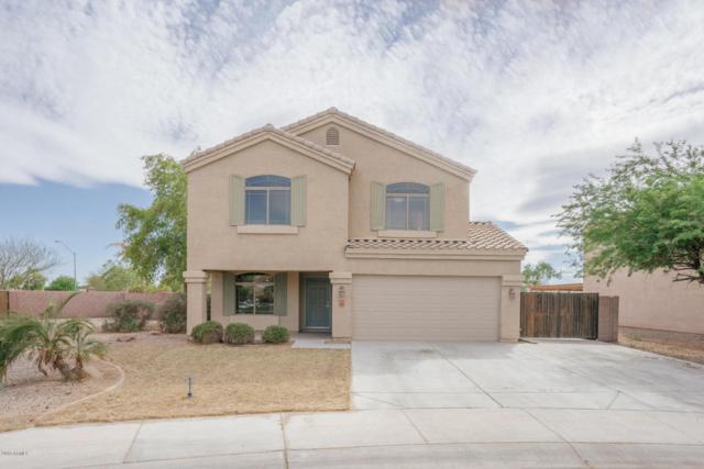 2486 S 160TH Drive, Goodyear, AZ 85338 (MLS #5770114) :: 10X Homes