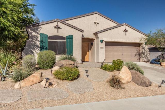 27309 N 84th Drive, Peoria, AZ 85383 (MLS #5770127) :: My Home Group