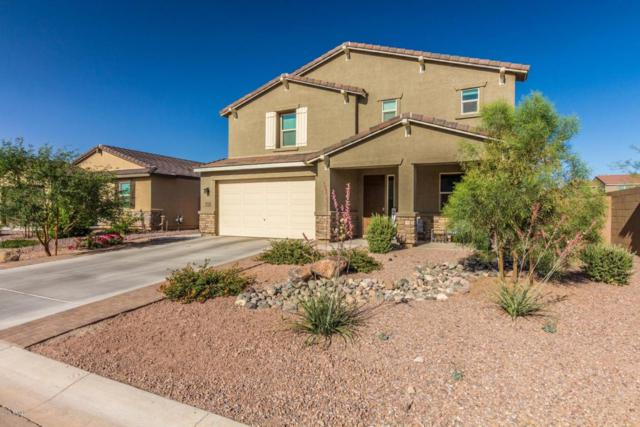 37335 W Glen Echo Drive, San Tan Valley, AZ 85140 (MLS #5770157) :: Yost Realty Group at RE/MAX Casa Grande