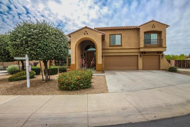 4558 N 153RD Lane, Goodyear, AZ 85395 (MLS #5770172) :: Lifestyle Partners Team