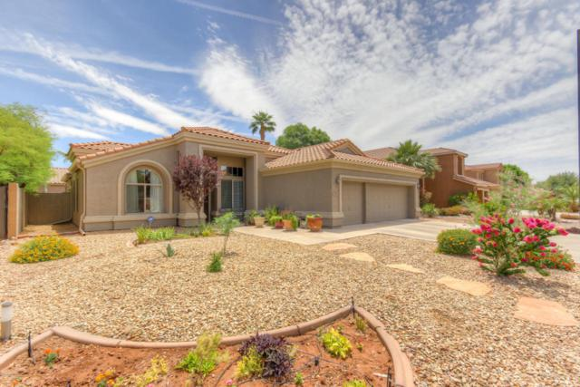 309 E Horseshoe Avenue, Gilbert, AZ 85296 (MLS #5770175) :: The Everest Team at My Home Group