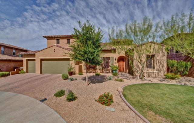 27466 N 86TH Lane, Peoria, AZ 85383 (MLS #5770182) :: My Home Group