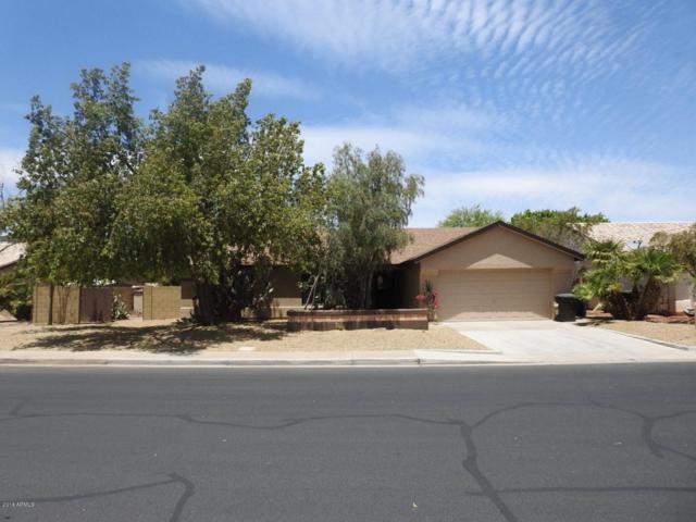 4634 W Earhart Way, Chandler, AZ 85226 (MLS #5770184) :: Kepple Real Estate Group