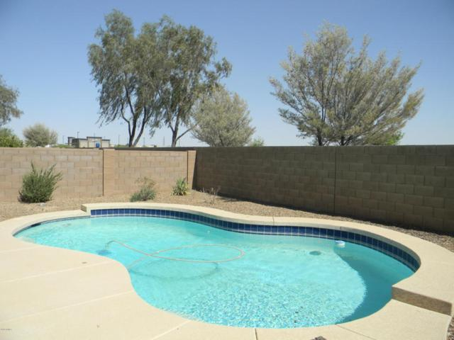 44951 W Bahia Drive, Maricopa, AZ 85139 (MLS #5770187) :: Yost Realty Group at RE/MAX Casa Grande