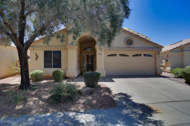 14023 W Santee Way, Surprise, AZ 85374 (MLS #5770218) :: Phoenix Property Group