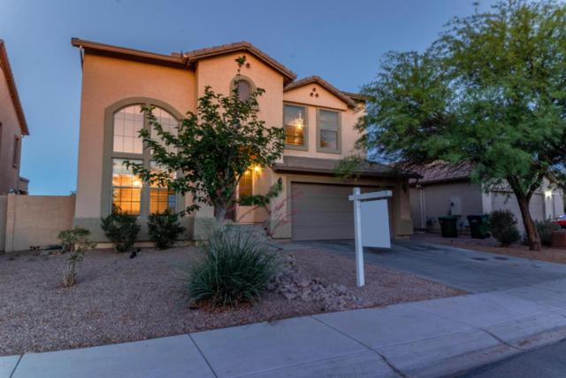 18509 N Larkspur Drive, Maricopa, AZ 85138 (MLS #5770220) :: Power Realty Group Model Home Center
