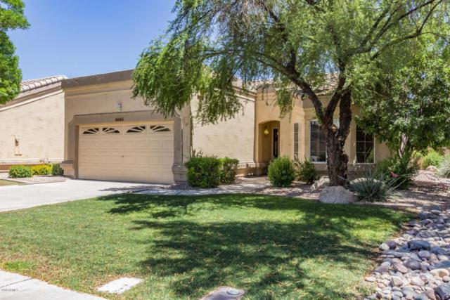 8831 W Rimrock Drive, Peoria, AZ 85382 (MLS #5770234) :: My Home Group