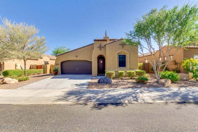 13677 W Jesse Red Drive, Peoria, AZ 85383 (MLS #5770236) :: Phoenix Property Group