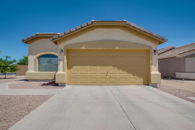 6816 E Pine Way, Florence, AZ 85132 (MLS #5770263) :: Yost Realty Group at RE/MAX Casa Grande