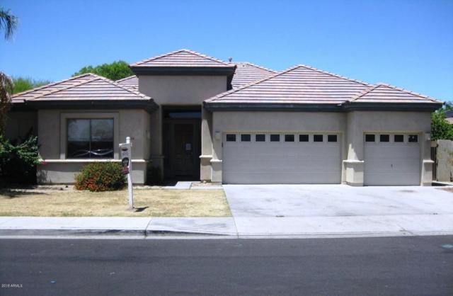 3924 N 146th Avenue, Goodyear, AZ 85338 (MLS #5770265) :: 10X Homes