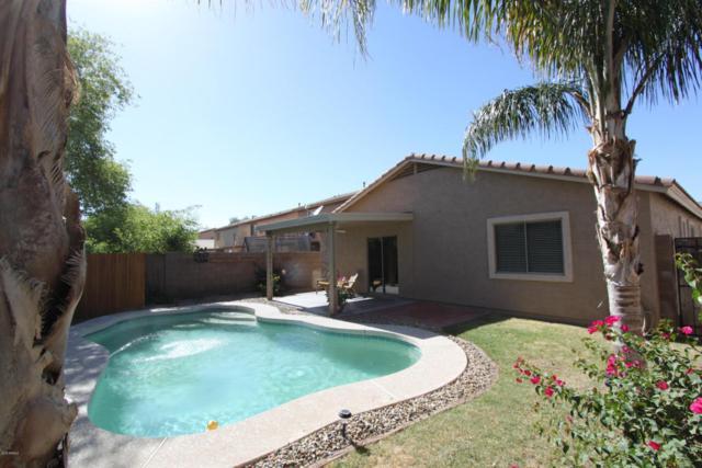 44913 W Miraflores Street, Maricopa, AZ 85139 (MLS #5770266) :: Yost Realty Group at RE/MAX Casa Grande