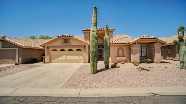 5516 S Feather Bush Court, Gold Canyon, AZ 85118 (MLS #5770293) :: Kortright Group - West USA Realty