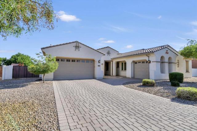 20126 E Via Del Oro, Queen Creek, AZ 85142 (MLS #5770306) :: Kepple Real Estate Group