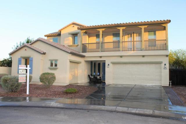 11903 W Daley Court, Sun City, AZ 85373 (MLS #5770323) :: Phoenix Property Group