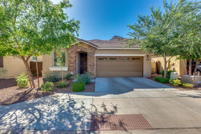 25134 N 56TH Avenue, Phoenix, AZ 85083 (MLS #5770340) :: My Home Group