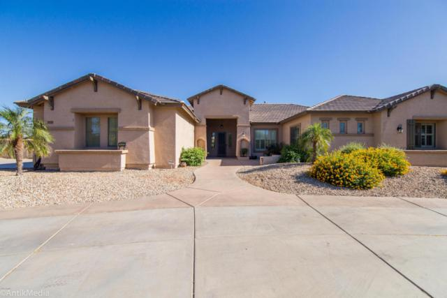 14337 W Greer Street, Surprise, AZ 85379 (MLS #5770356) :: Phoenix Property Group