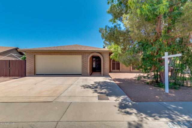 15835 N 63RD Drive, Glendale, AZ 85306 (MLS #5770372) :: 10X Homes