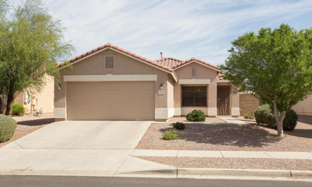 3038 W Lucia Drive, Phoenix, AZ 85083 (MLS #5770377) :: Kepple Real Estate Group