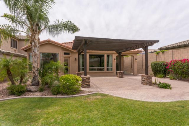 16867 N 98TH Place, Scottsdale, AZ 85260 (MLS #5770409) :: Kepple Real Estate Group