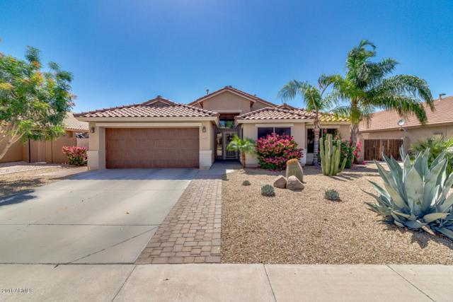 4628 S Joshua Tree Lane, Gilbert, AZ 85297 (MLS #5770413) :: Kepple Real Estate Group