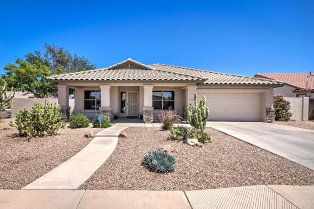 2340 E Geronimo Street, Chandler, AZ 85225 (MLS #5770417) :: Kepple Real Estate Group