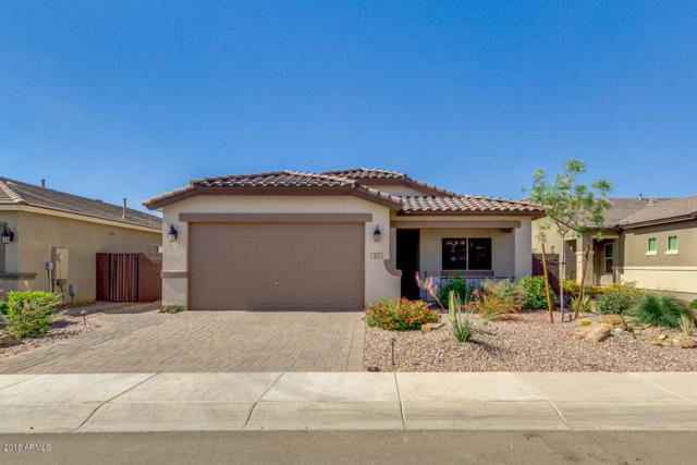 404 W Flame Tree Avenue, San Tan Valley, AZ 85140 (MLS #5770419) :: Yost Realty Group at RE/MAX Casa Grande
