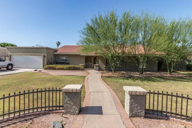 3534 E Ellis Street, Mesa, AZ 85213 (MLS #5770431) :: Yost Realty Group at RE/MAX Casa Grande